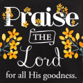 magnet_praise_the_lord